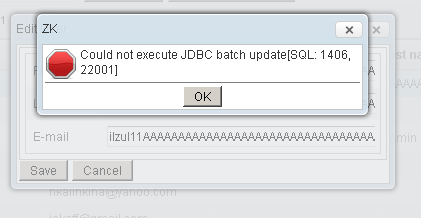 could not execute jdbc batch update